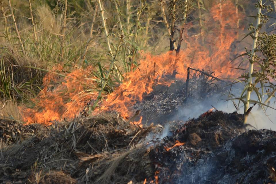Sierra de la Ventana – Personal municipal realiza una quema controlada de ramas