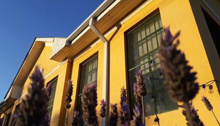 Sierra de la Ventana – Hoy hay actividad cultural en la Biblioteca «Mariano Moreno»