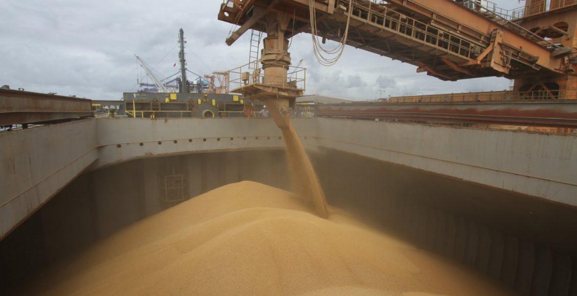 La producción de granos crecería 7,2 % en el ciclo 2021/22